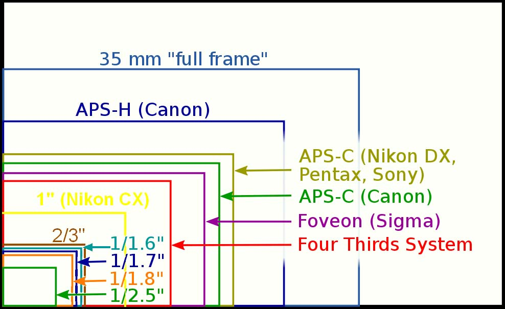 A graphic comparing the size of various camera sensors