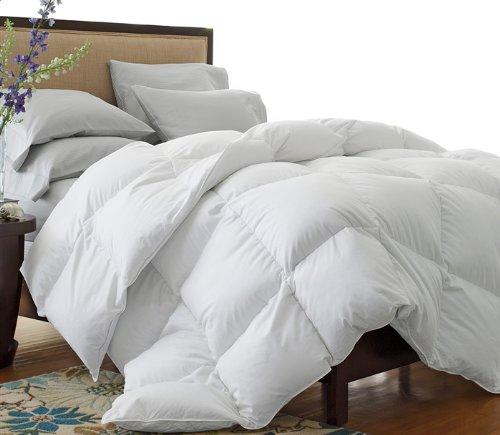 cozy-new-bedding.jpg