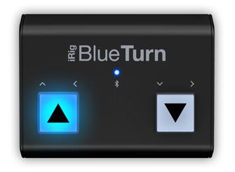 irig_blueturn_front.jpg