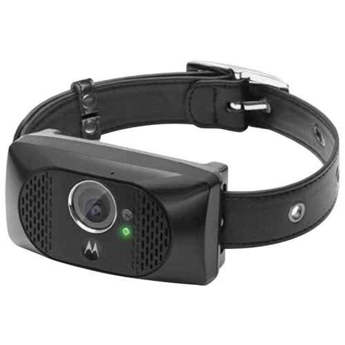 Motorola scout5000 gps pet tracker.jpg