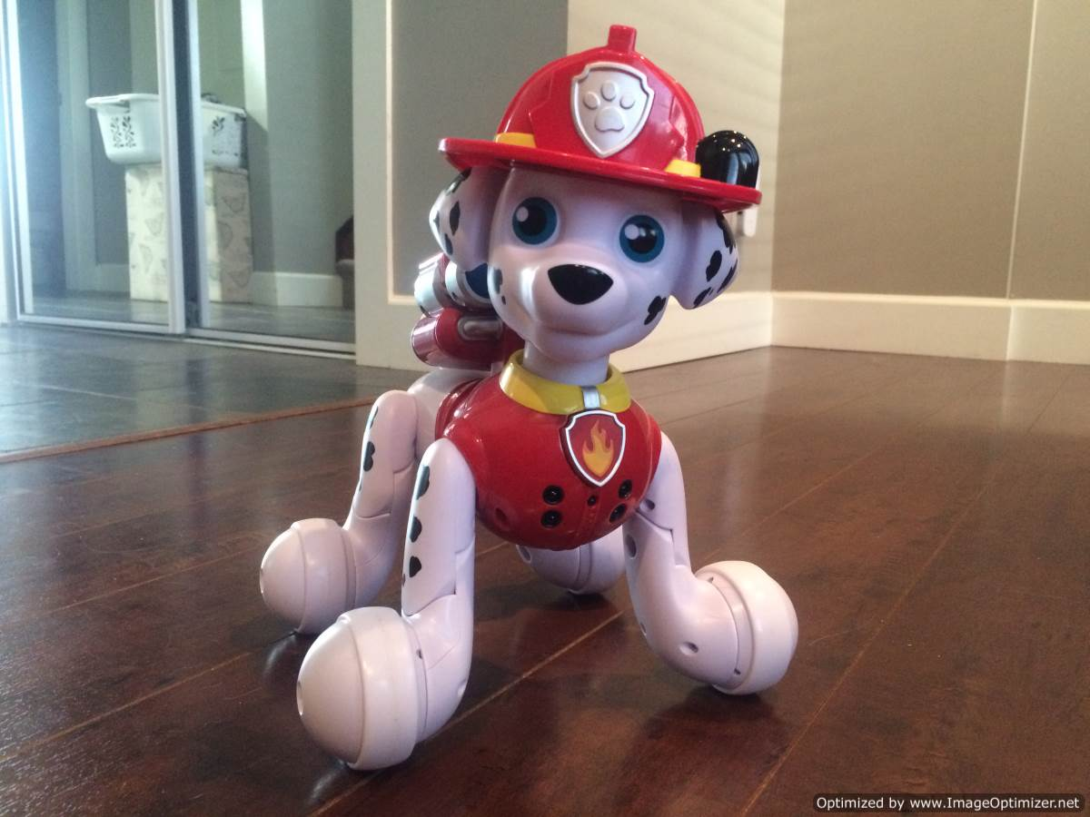 Review Paw Patrol Zoomer Marshall Best Buy Blog