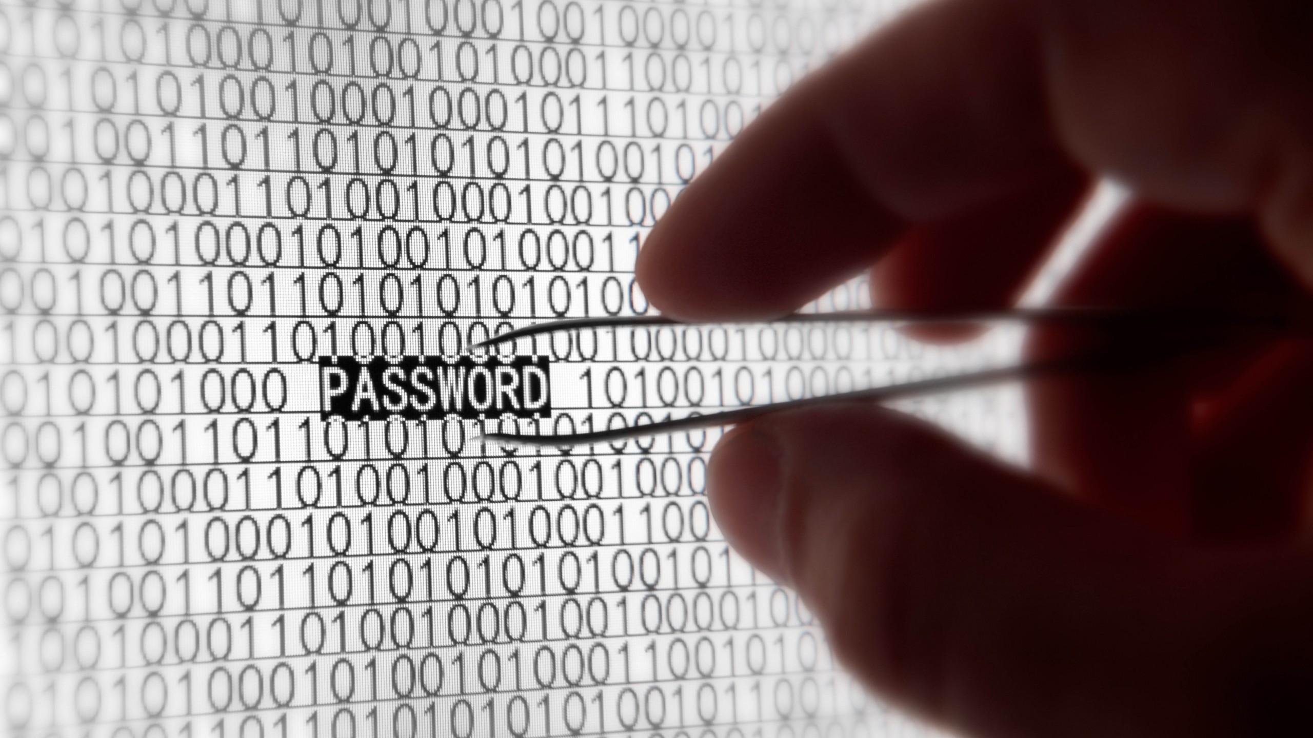 steal_password
