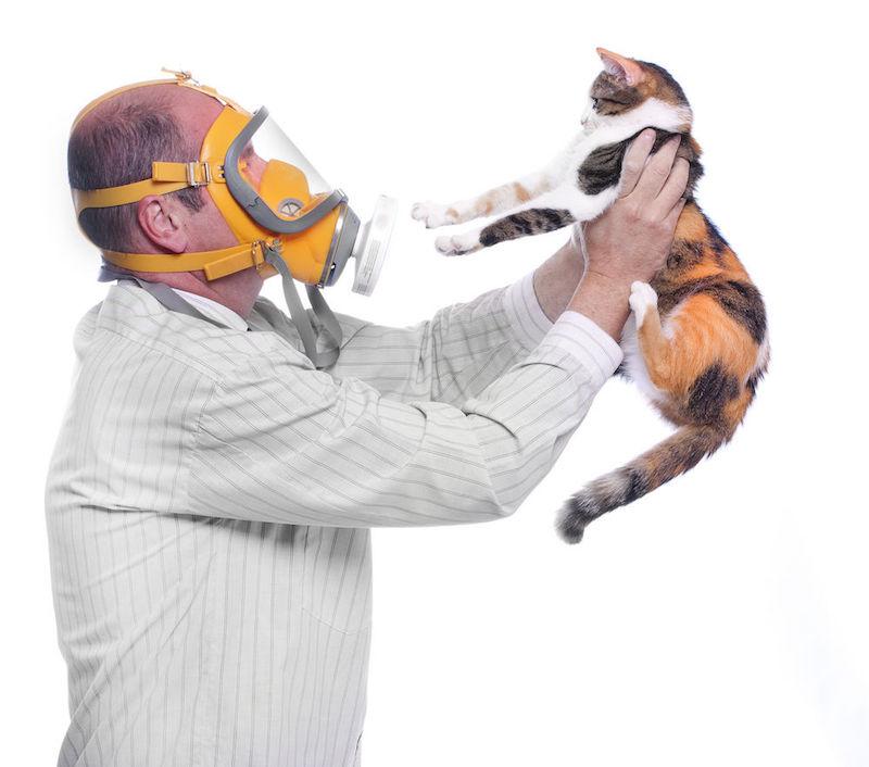 robot vacuum pet allergies