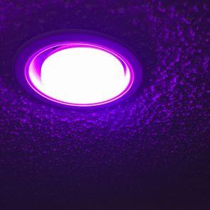 Playbulb Reflector bulb installed.