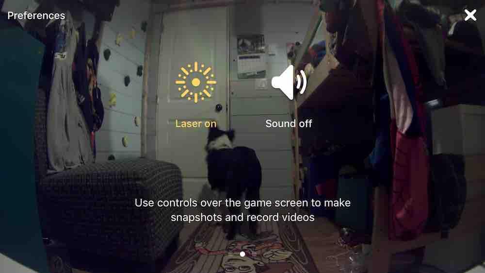 petcube-play-app-screen-shot