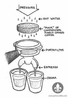 Anatomy of Espresso Machine