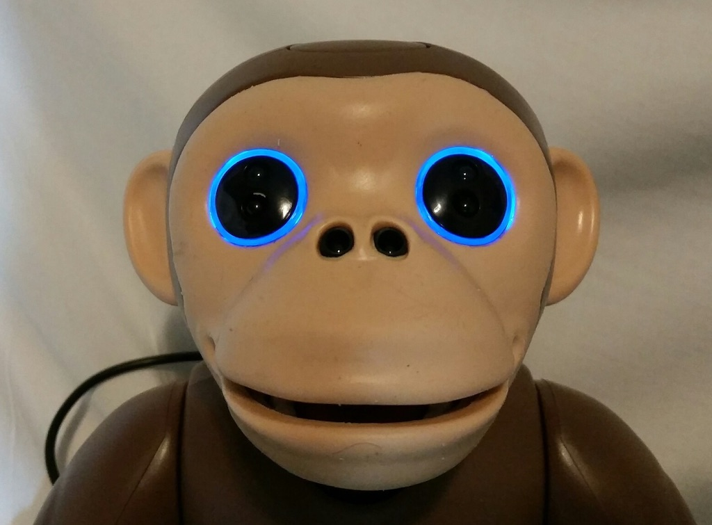 zoomer-chimp-charging-eyes