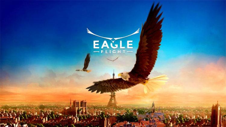 eagle-flight-top