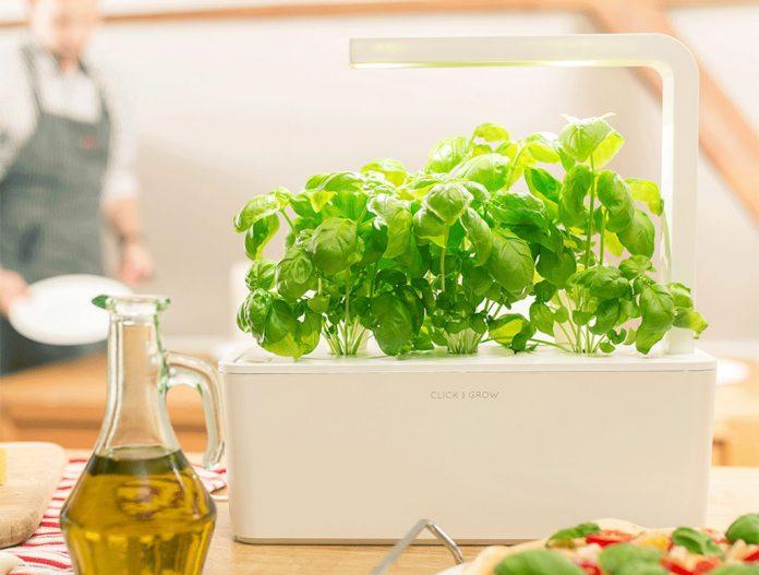 Click & Grow Smart Garden Review