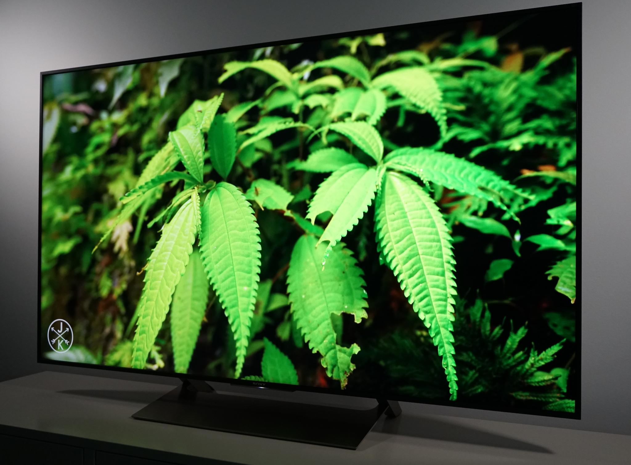 Sony X900E - Best-Buy-Canada-Plug-in-Blog