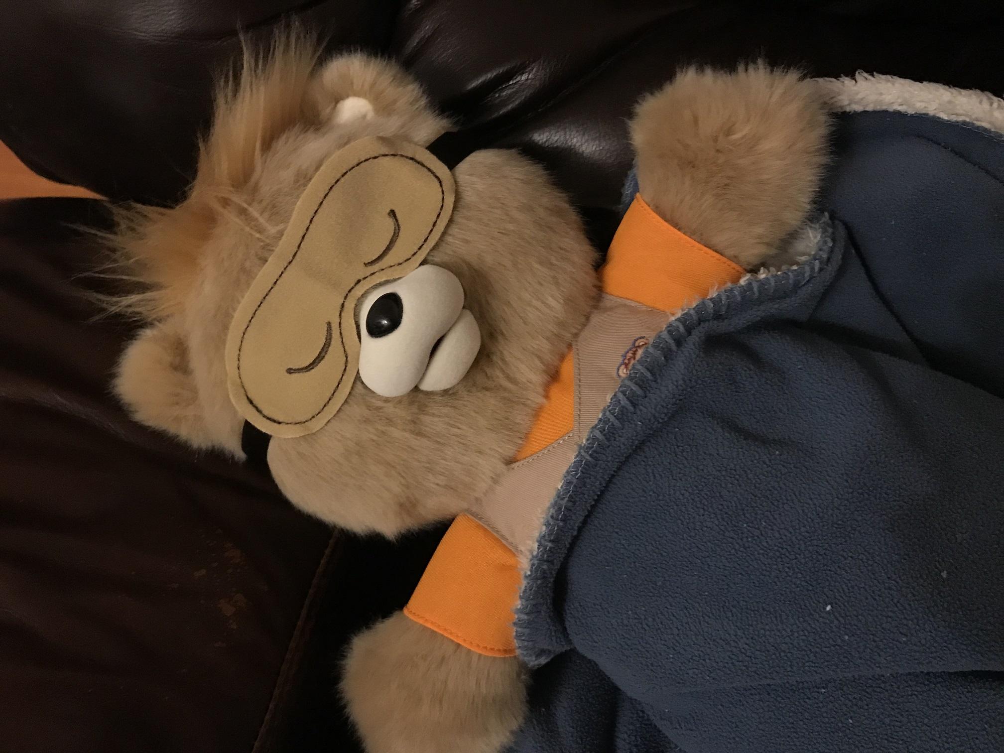 Teddy Ruxpin Sleeping