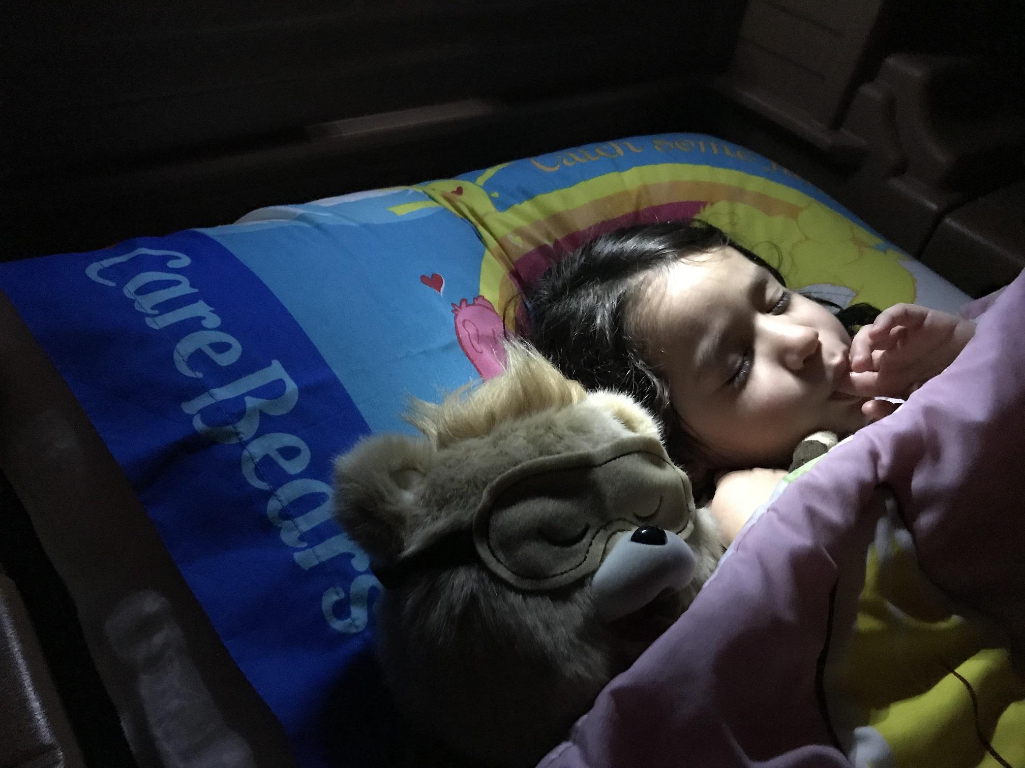Teddy Ruxpin and Char Asleep