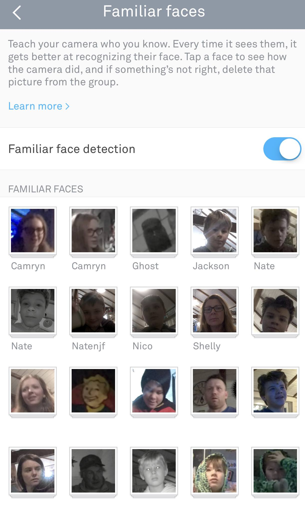 Facial detection Nest Cam IQ