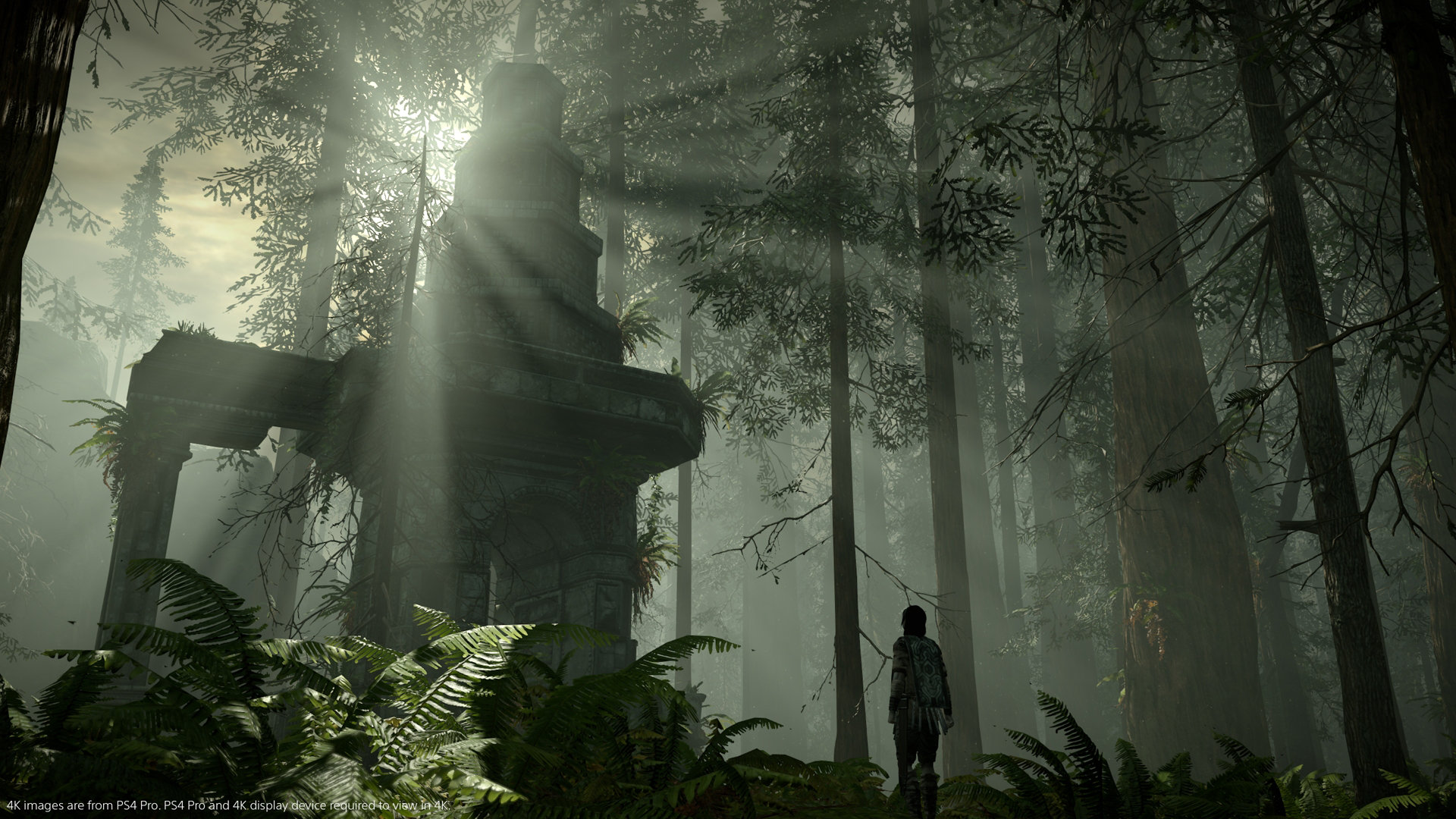 Shadow of the Colossus PS4 lighting