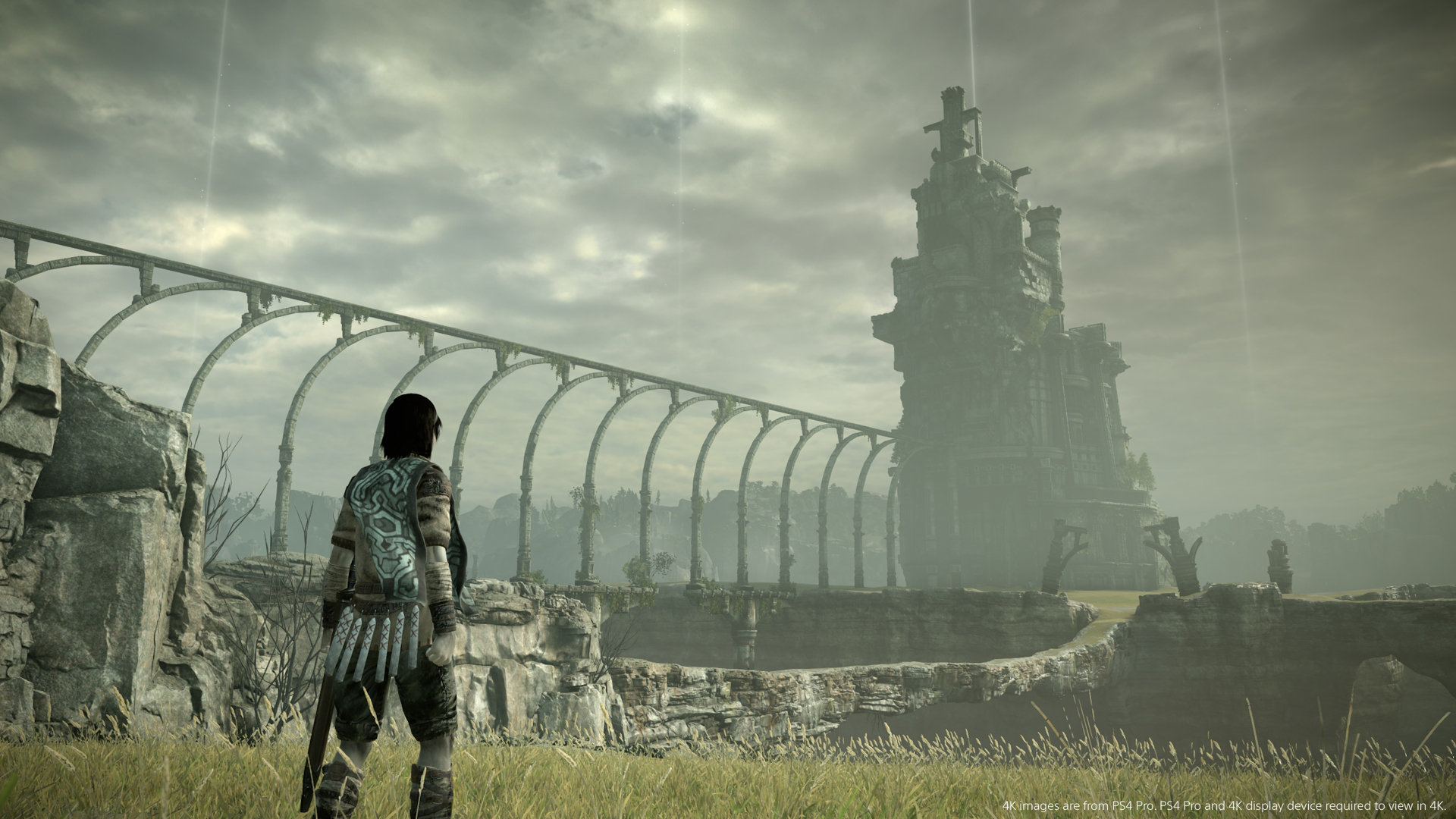 Shadow of the Colossus PS4 graphics