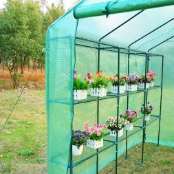 greenhouses and garden shelters - outsunny greenhouse flowers inside