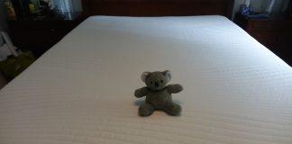 koala mattress review - koala mattress with koala stuffy