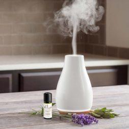 Homedics aromatherapy