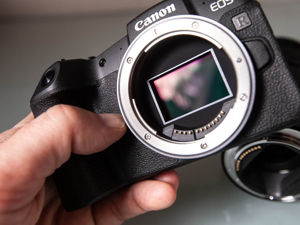 A photo of a hand holding the Canon EOS RP camera without a lens