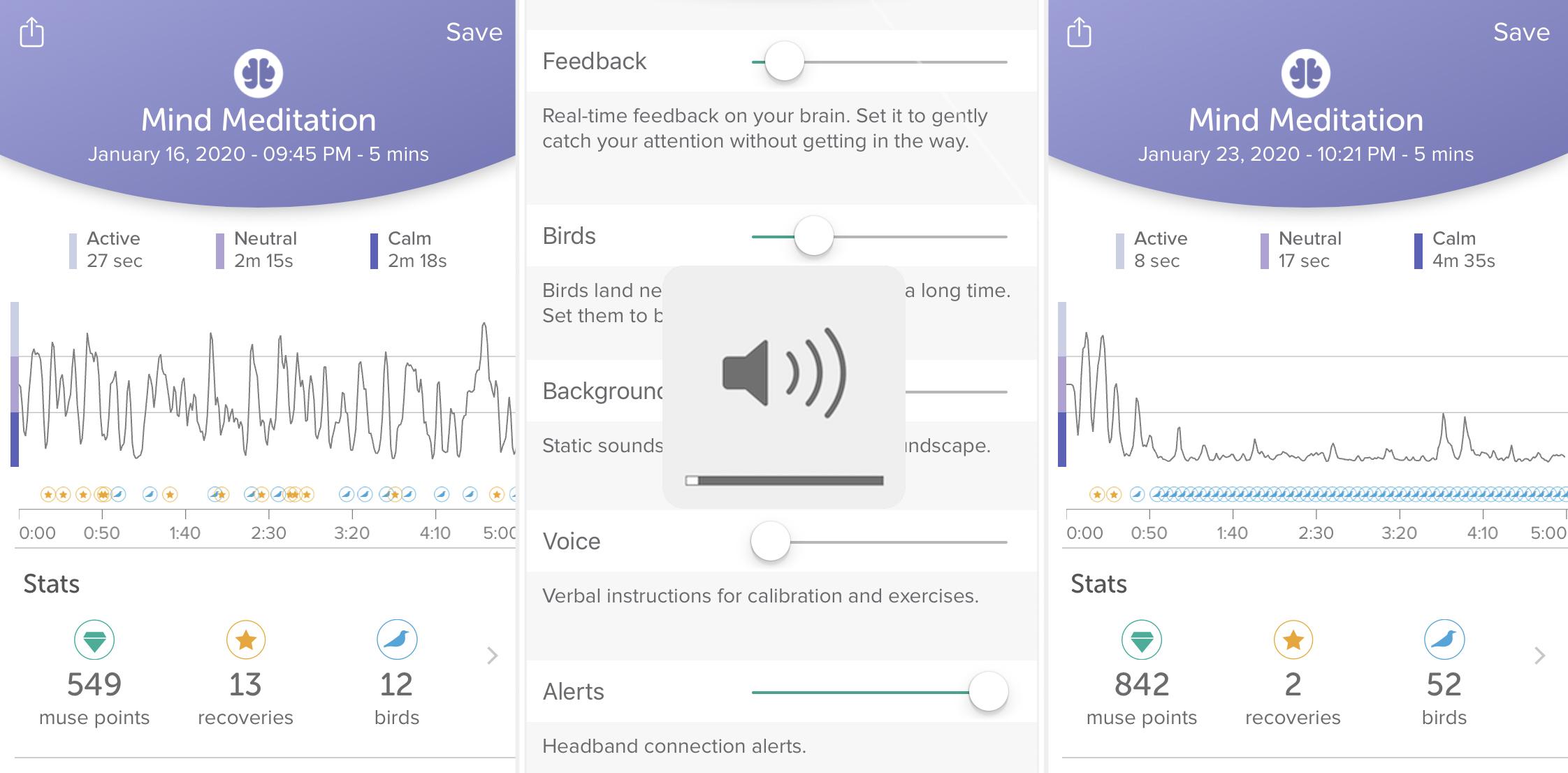 Muse app volume controls