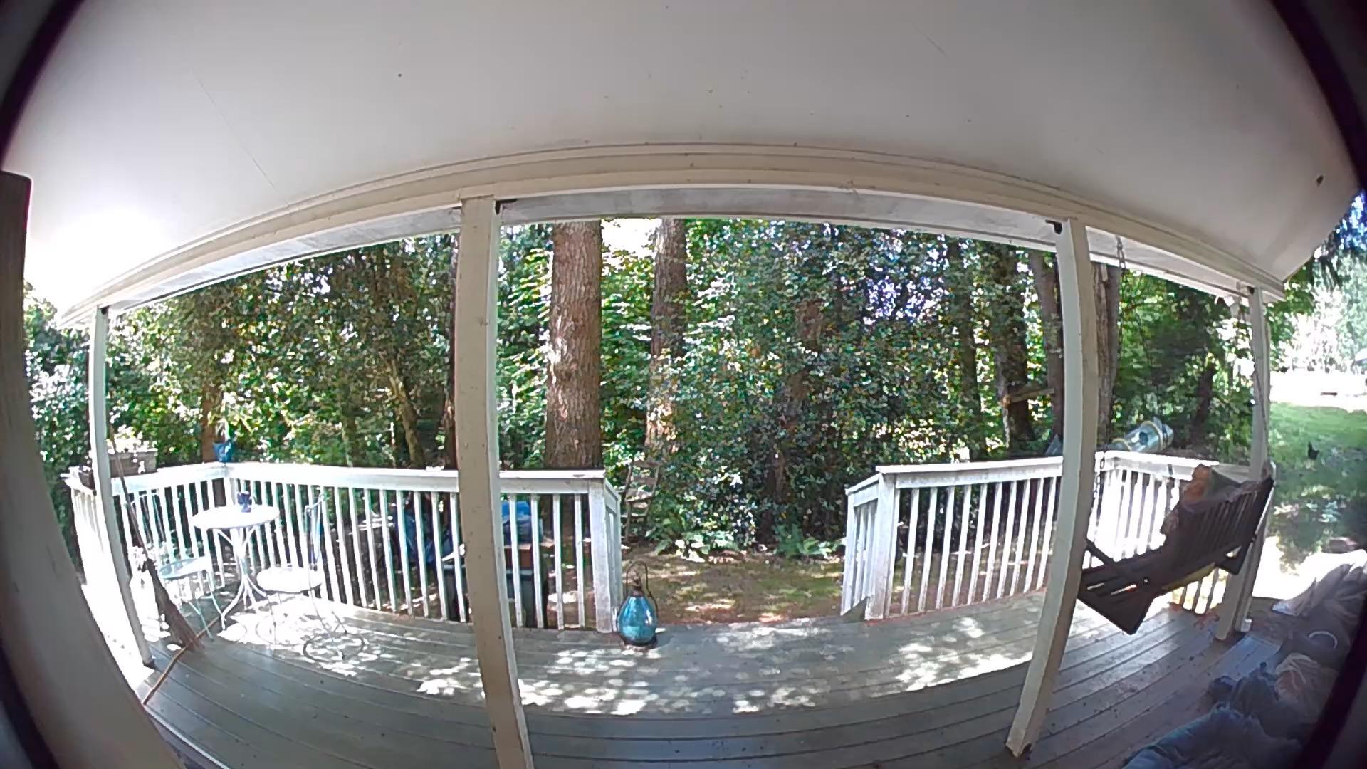 Ring Video Doorbell 3 snapshot