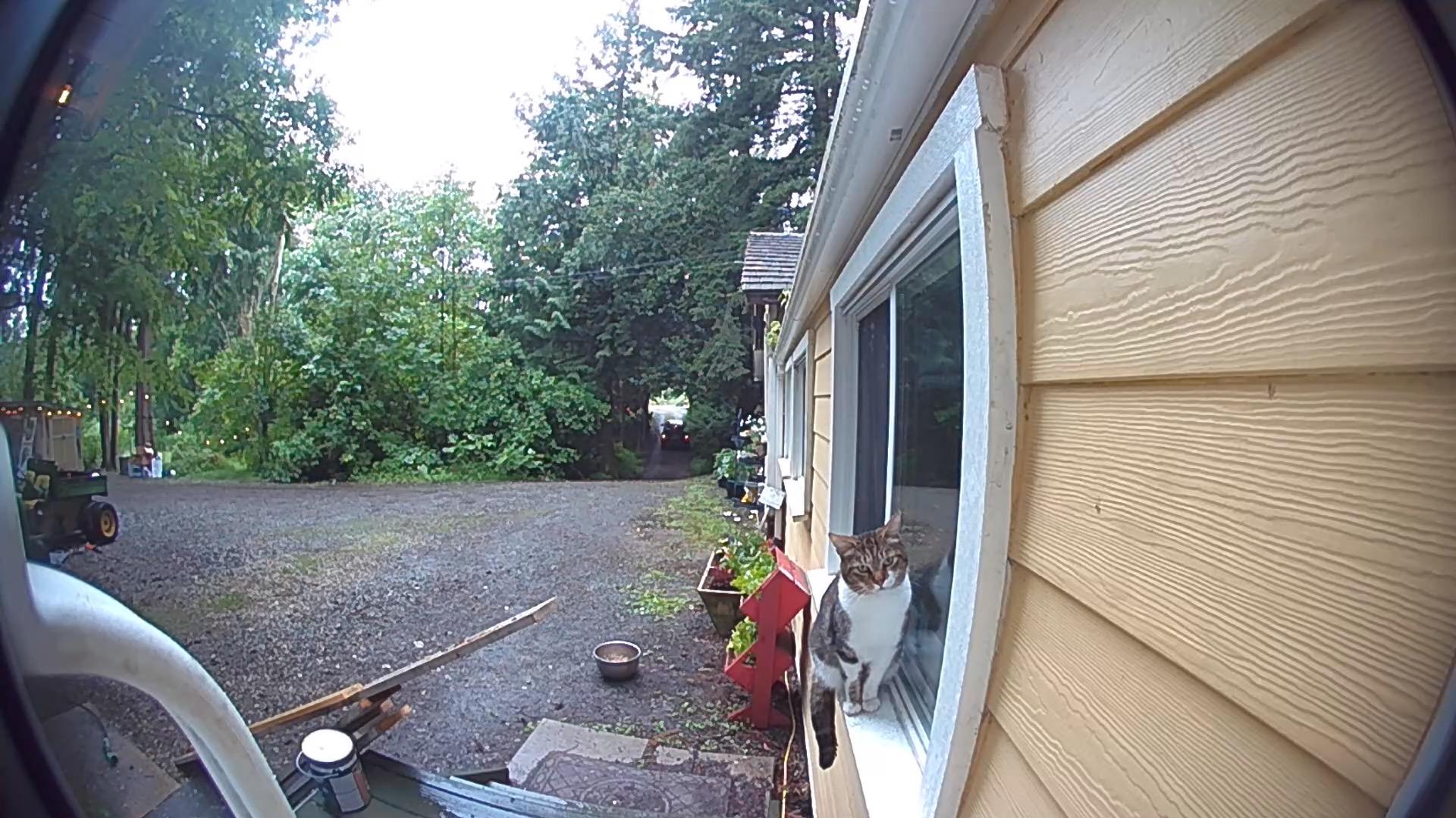 Ring Video doorbell 3 Plus snapshot