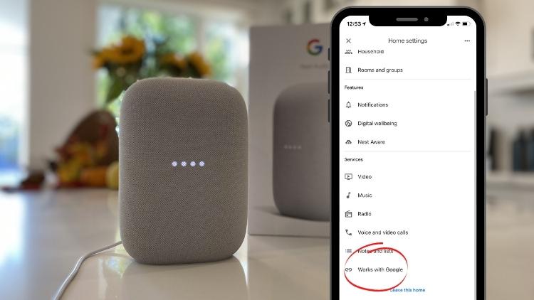 Nest Audio works with google