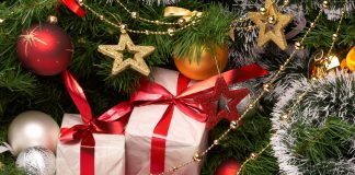 ppliance gifts for the holidays
