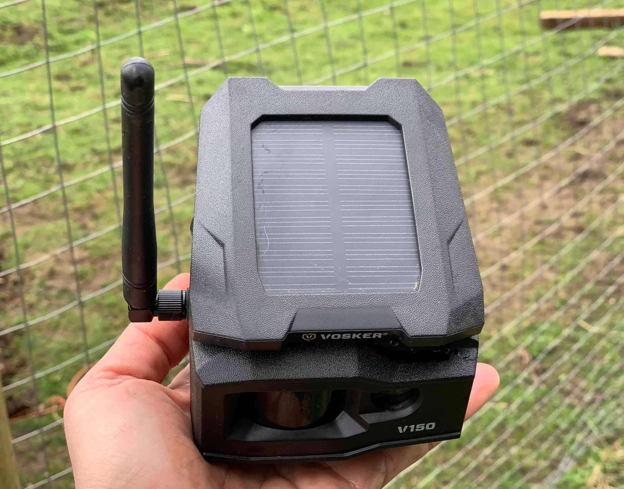 Vosker v150 solar panel