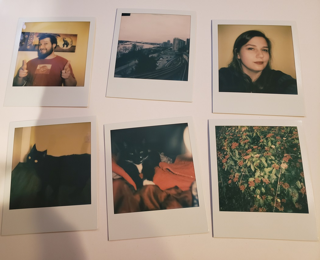 image of 6 Polaroid photos