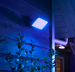 Philips Hue Econic Discover LED Smart Outdoor Floodlight