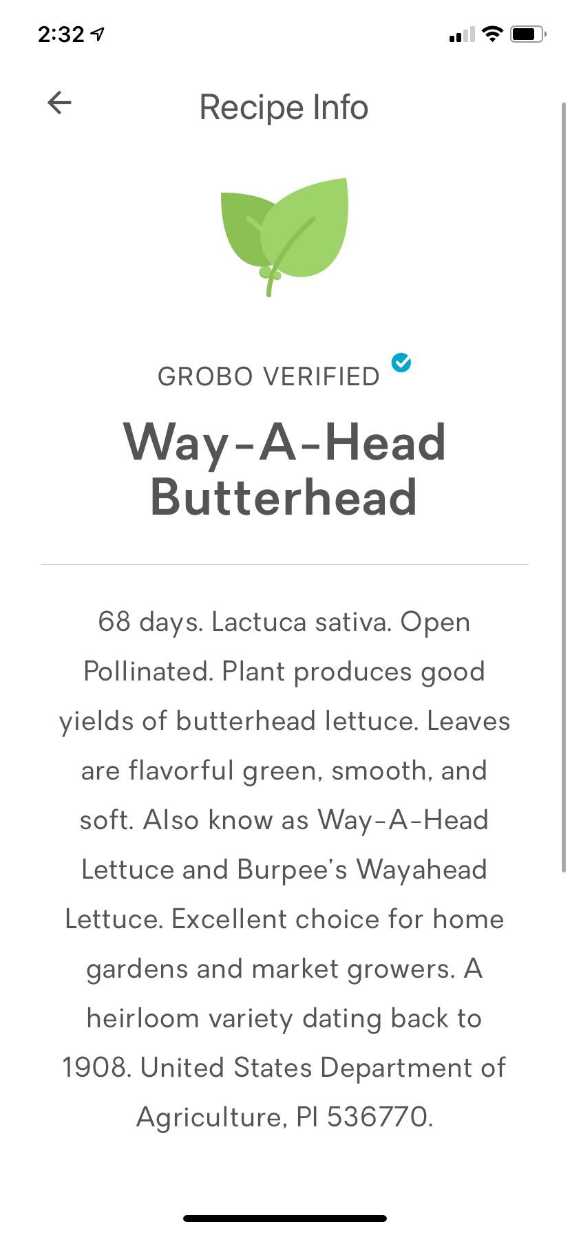 Grobo app Way-A-Head Butterhead lettuce recipe
