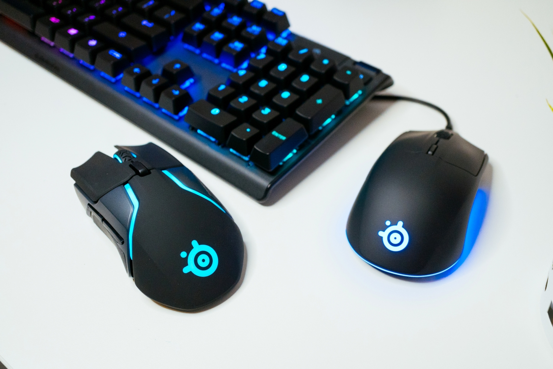 SteelSeries Rival 3 and Rival 650