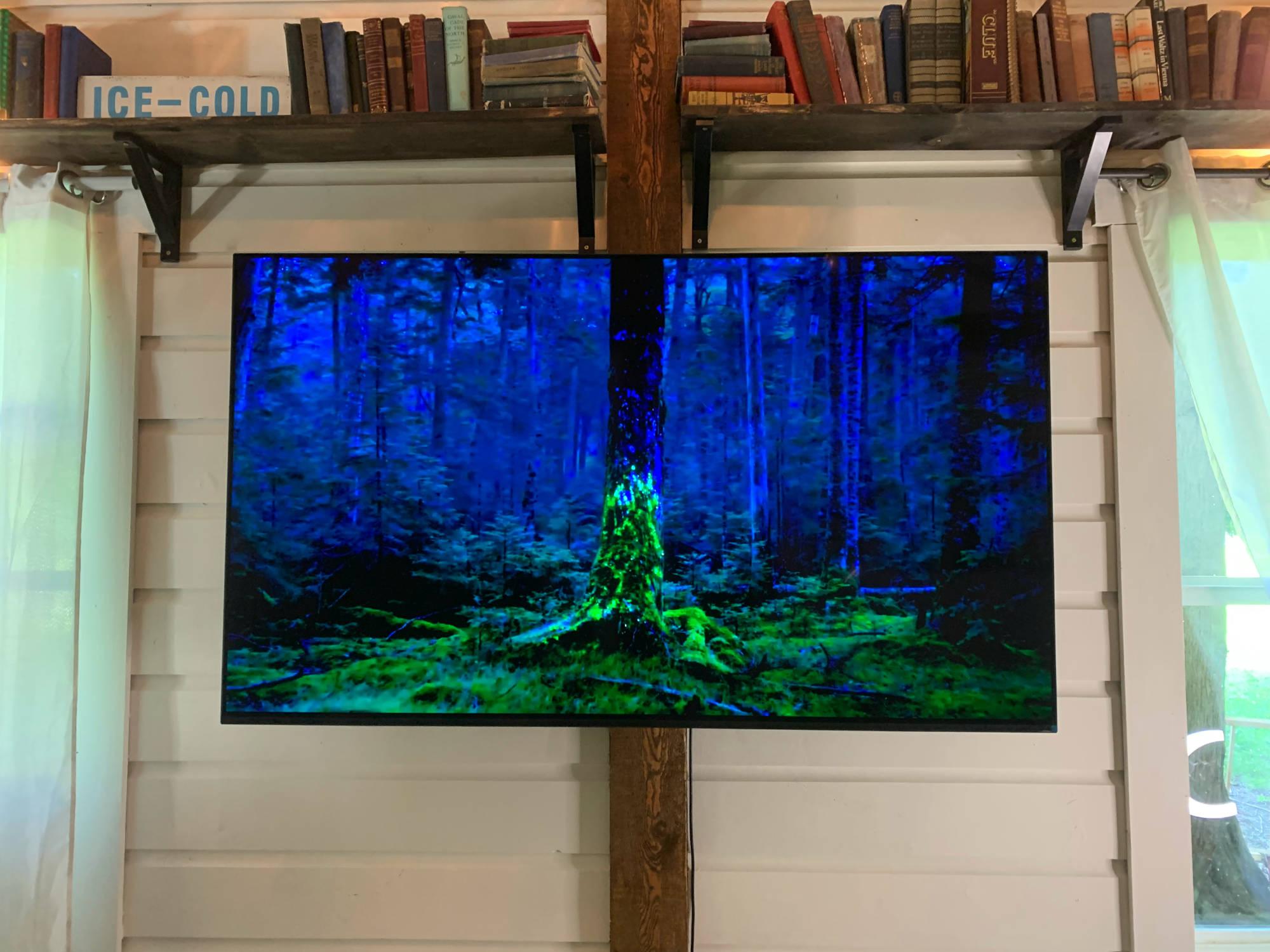 Sony OLED A80J 2021