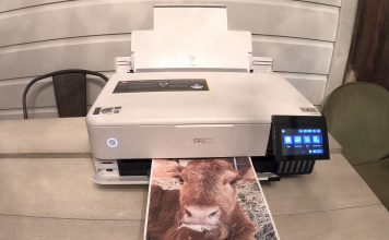 epson ecojet printing on plain paper