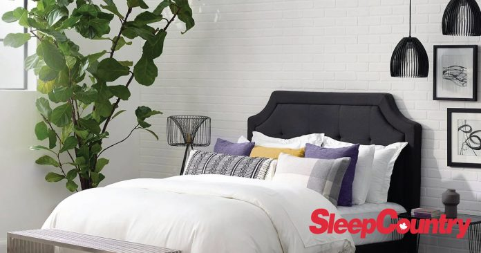 Sleep Country available at Best Buy feature image