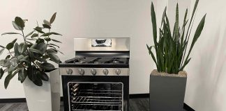 Insignia Gas Convection range review