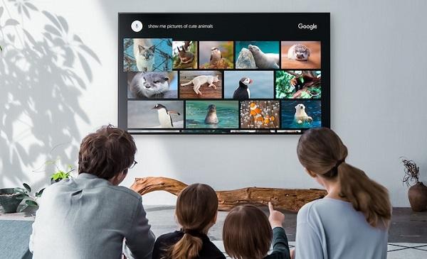 Voice control Google TV